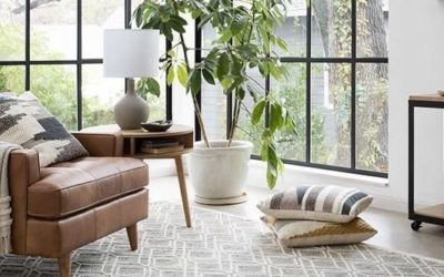 5 Tips on How to Choose the Perfect Rug